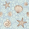Shell pattern - Stock Photo