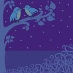 gece kuşları — Stok fotoğraf