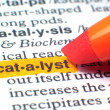 Catalyst, Highlighted In Dictionary In Orange — Stock Photo