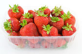 Strawberries in tubs — Stock Photo