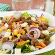 Mixed vegetable salad with beans and tuna — Stock Photo