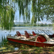 Pedal boats on the lake Fibreno — Stock Photo