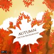 Vector abstract background with round card and autumn leaves — Stock Vector #12272909