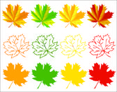 Set of autumn maple leaves — Stock Vector