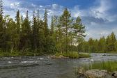 Keret River in Karelia. — Stock Photo