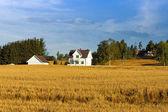 在挪威的房子农夫. — 图库照片