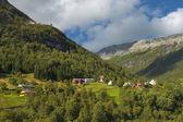 The Norwegian mountain village. — Stock Photo