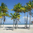 Sunny Miami Beach — Stock Photo #11654515