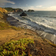 Stock Photo: Sunset over Pacific Oceand steep cliffs in California