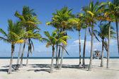Slunné miami beach — Stock fotografie