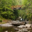 Old Iron Bridge over Forest River — Stock Photo #11660773