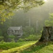 Old watermill in forest at dawn — Stock Photo #11660826