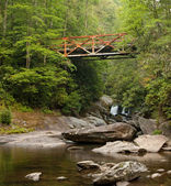 Old Iron Bridge over Forest River — Stock Photo