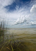 Stormy afternoon in Outer Banks — Stock Photo