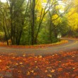 Mountain road in autumn — Stock Photo