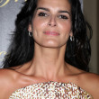Angie Harmon — Stock Photo