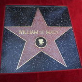 William H Macy star — Stock Photo