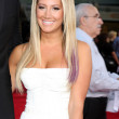Постер, плакат: Ashley Tisdale