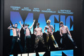 Magic Mike Poster — Stock Photo