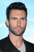Adam Levine — Stock Photo