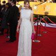 Arrives at the 18th Annual Screen Actors Guild Awards — Zdjęcie stockowe