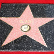 Stock Photo: Slash Walk of Fame star