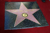 Paul McCartney Star — Stock Photo