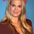 Stock Photo: Molly Sims