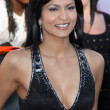 Stock Photo: Tinsel Korey