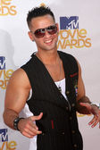 Mike Sorrentino (The Situation) — Stock Photo