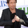 David Duchovny — Stock Photo #11946071