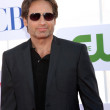 David Duchovny — Stock Photo #11946077