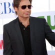 David Duchovny — Stock Photo #11946078