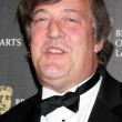 Stock Photo: Stephen Fry