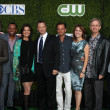 CSI: NY Cast - Aj Buckley, Hill Harper, Sela Ward, Gary Sinise, Carmine Giovinazzo, Anna Belknap, Robert Joy and Eddie Cahill — Stock Photo #12511559
