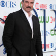 Stock Photo: Tom Selleck