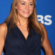 Megyn Price - Stock Photo