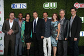 CSI: NY Cast - Aj Buckley, Hill Harper, Sela Ward, Gary Sinise, Carmine Giovinazzo, Anna Belknap, Robert Joy and Eddie Cahill — Foto Stock
