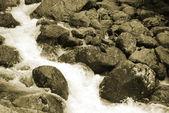 小さな川 — ストック写真