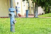 消火栓 — 图库照片