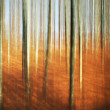 Abstract autumn forest - painting effect — Stock Photo