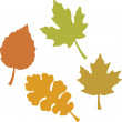 Four Leaves — Stock Photo