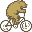 A bear riding a bike — Stock Photo