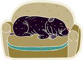 A cute black dog sleeping on a sofa — Стоковое фото