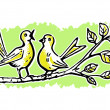Two birds on a tree branch singing — Stock Photo