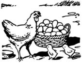 A black and white version of an illustration of a hen with two small chicks and a large basket of eggs — Stock Photo