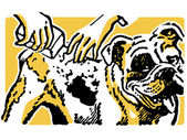 Uma ilustração de um bulldog, tendo uma lavagem — Foto Stock