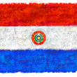 Flag of Paraguay — Stock Photo #12171402