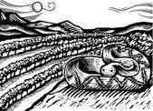 Ilustração de uma cobra — Foto Stock