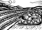 Illustration of a snake — Stock Photo